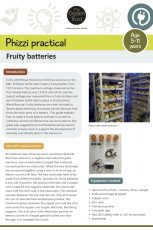 Phizzi practical: fruity batteries
