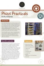 Phizzi Practicals: fruity batteries